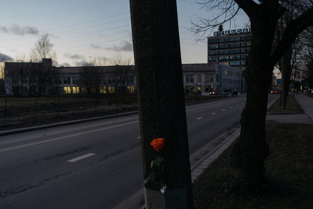 Tallinn, Estonia, December 2016