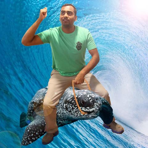 roul_riding_a_turtle.jpg