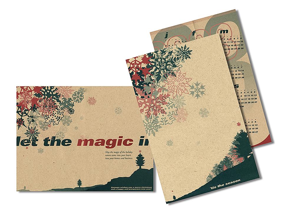 Amneon Christmas Card.jpg