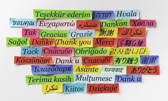 thank+you+languages