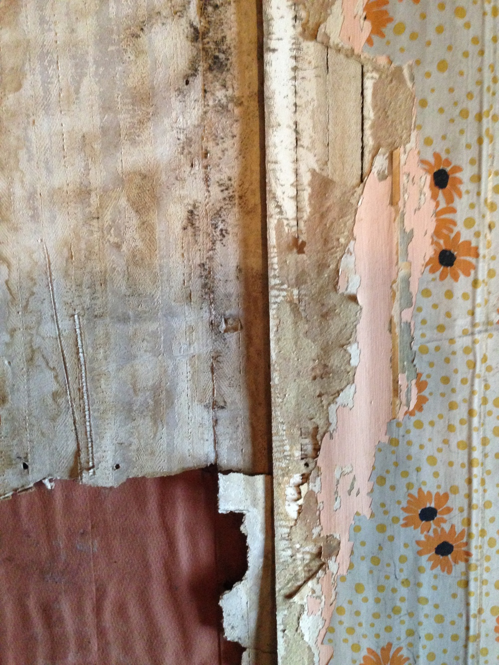 layer under wallpaper
