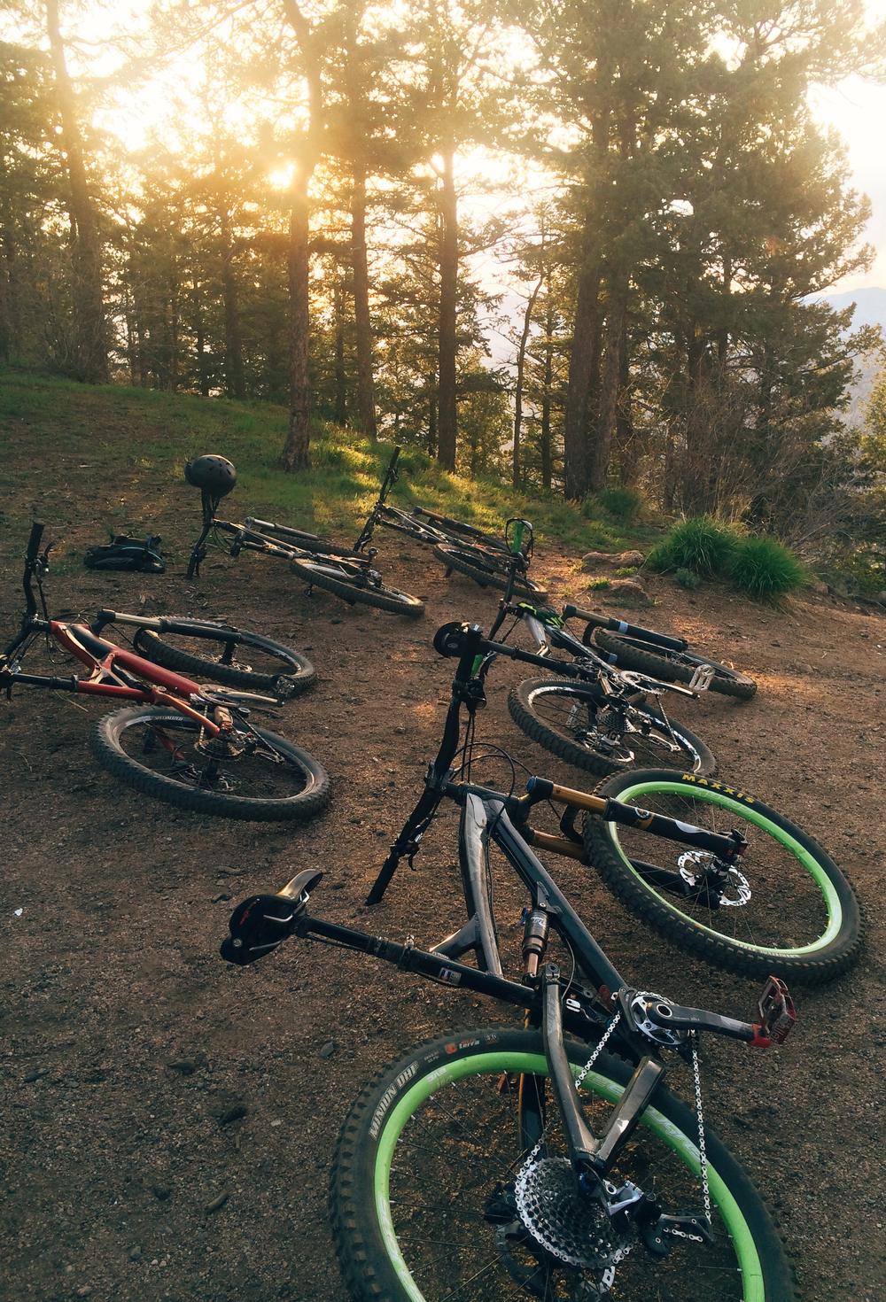 bikes2_CROP.jpg