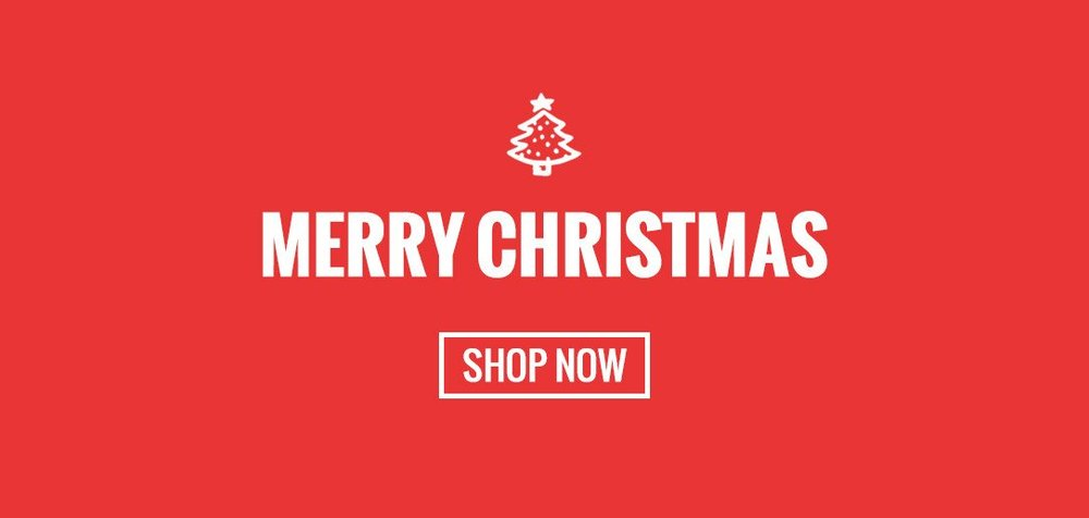 NEWSLETTER_DEC_merry_christmas_495e8570-863e-4056-a1a0-57a7b8497939.jpg