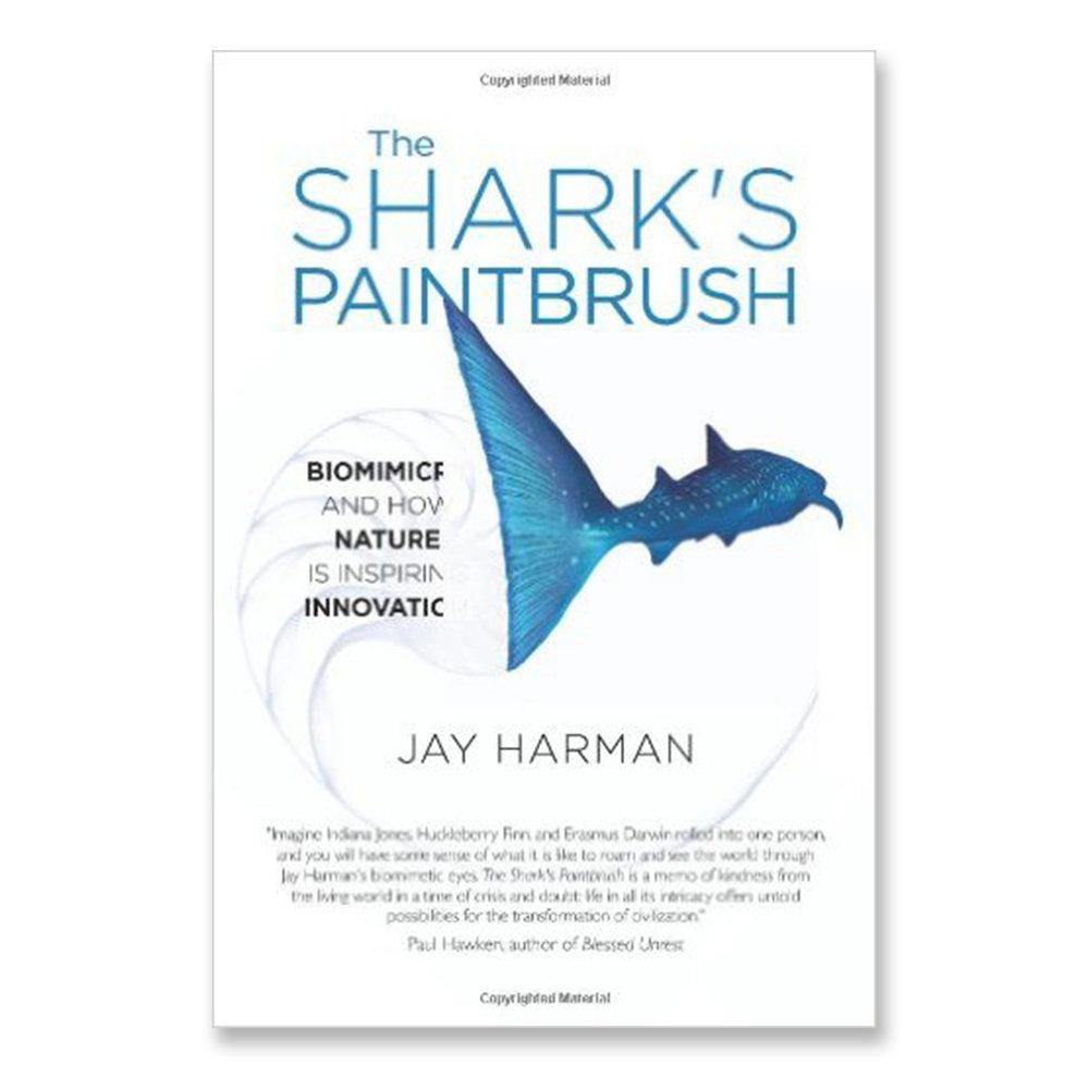 SEDBooks_0007_SharksPaintbrush.jpg