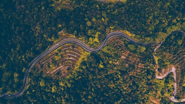 A curvy road.