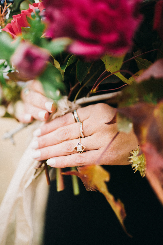 india rings color.jpg