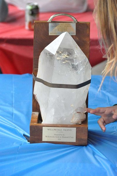 The Quartz Crystal!.jpg