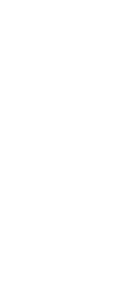 Saint Milkweed guitar