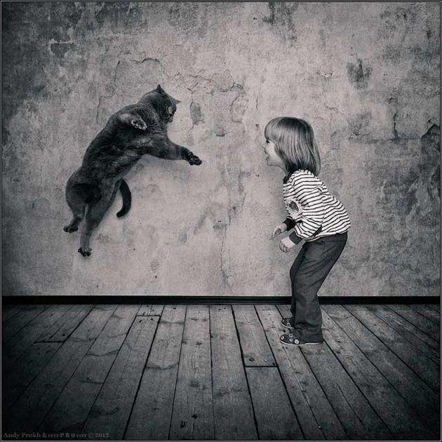 jumping_cat