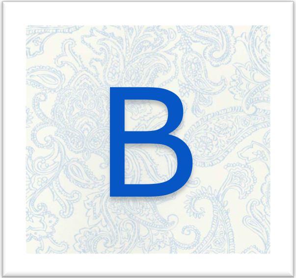b on paisley.JPG