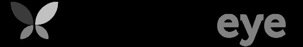 Butterfleye_logo.png