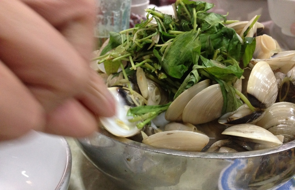 Steamed Clams in a warm broth with Vietnamese herbs - Hanoi, Vietnam