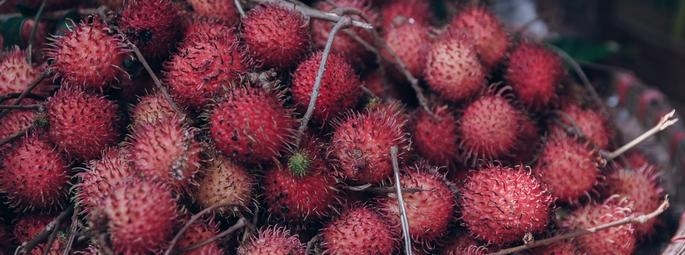 Rambutan - A beautiful gem of tropical fruit is beneath the armored magenta shell.  Kinda tastes like lychee.