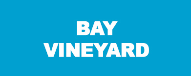 Bay Vineyard, Napier