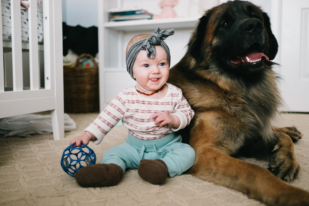 Baby girl with dog