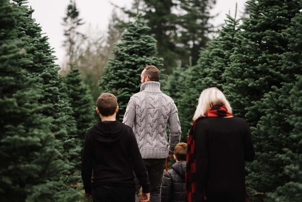 family looking for christmas tree