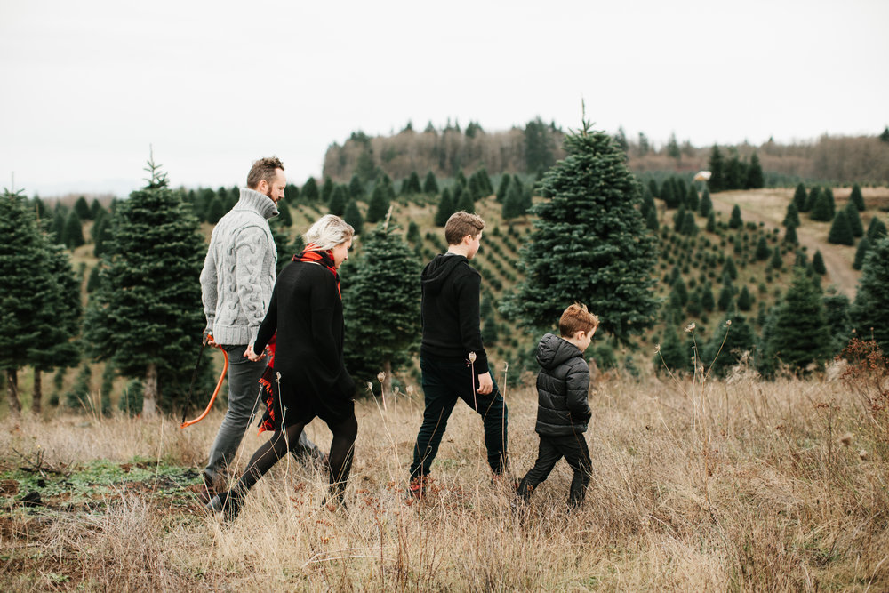 Family walking in christmas tree farm
