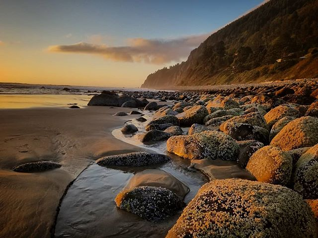 The Oregon coastline is unfiltered, unadulterated beauty and I am not ready to leave it behind 😥. Thank you Manzanita,  you have been a 🎁🙋🏼‍♀️ . . . #oregoncoast #coastline #pacificnorthwest #ocean #beach #westcoastisthebestcoast #upperleftusa #manzanita #oregon #sunset #goldenhour
