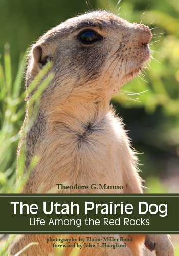 The Utah Prairie Dog: Life Among The Red Rocks  Written by Theodore G. Manno with foreword by John L. Hoogland Photographed by Elaine Miller Bond University of Utah Press (November, 2014)   ISBN-10: 1607813661; ISBN-13: 978-1607813668