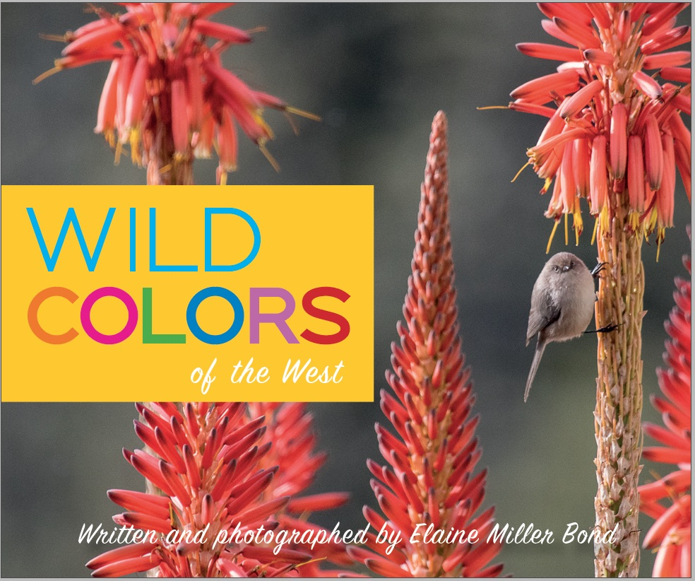 Wild Colors of the West Written and photographed by Elaine Miller Bond Heyday Books, Fall 2019