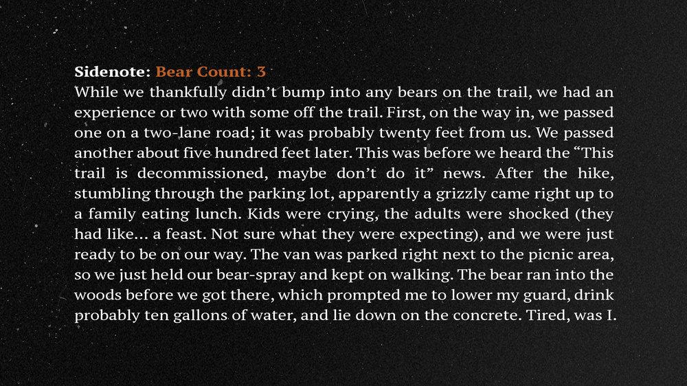 BearCount.jpg