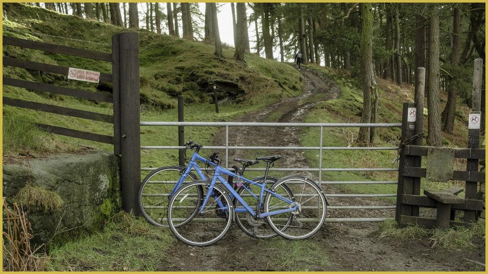BikeGate.jpg