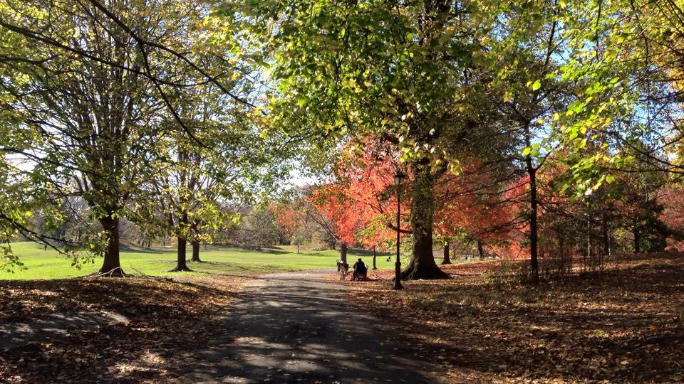 Prospect Park, Brooklyn