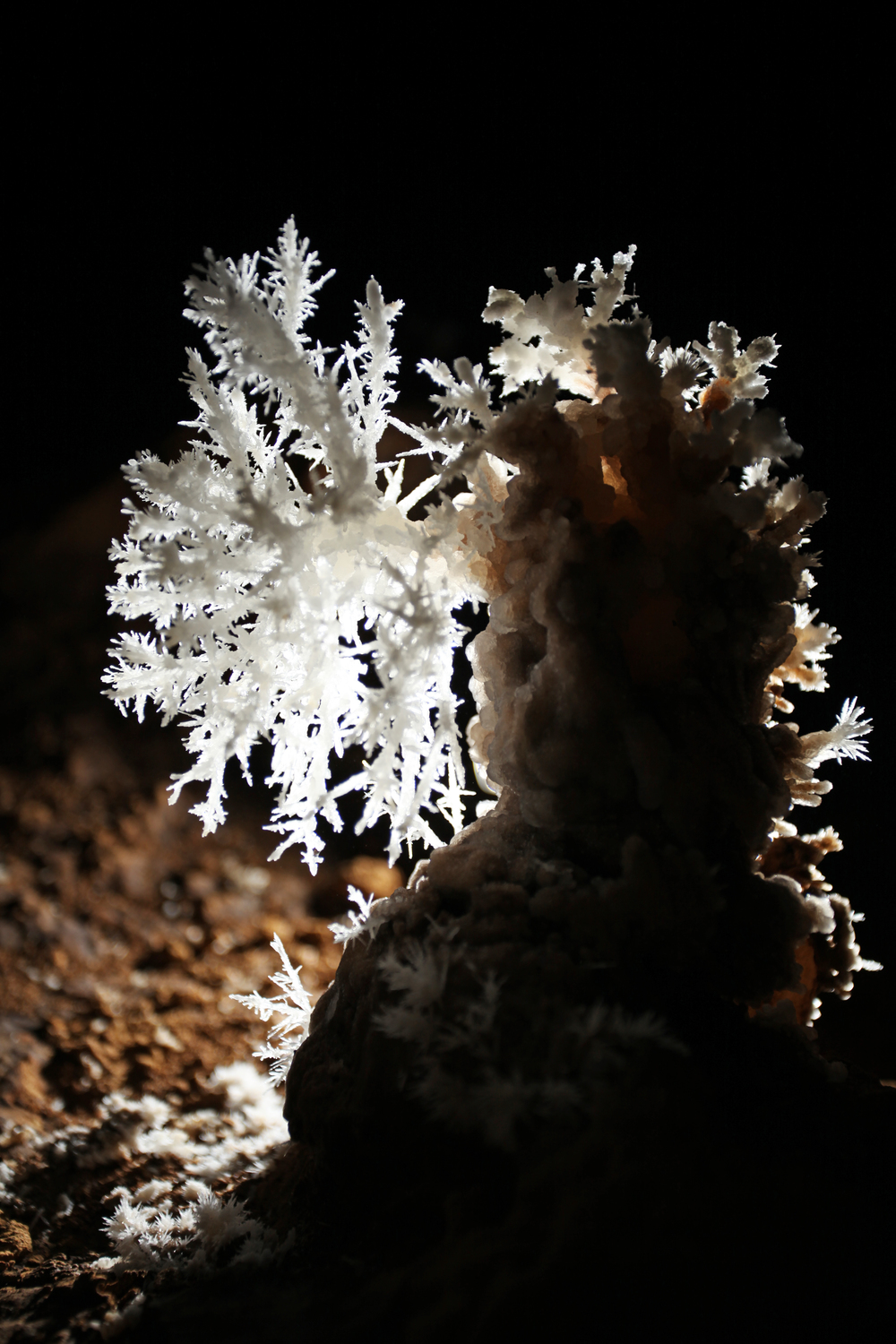 Anthodite hall is host to a mind blowing display of delicate anthodite crystals.