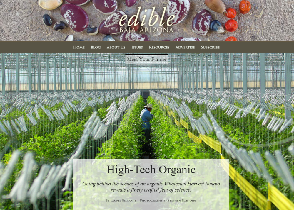 Read the full story: http://ediblebajaarizona.com/high-tech-organic-wholsum-harvest