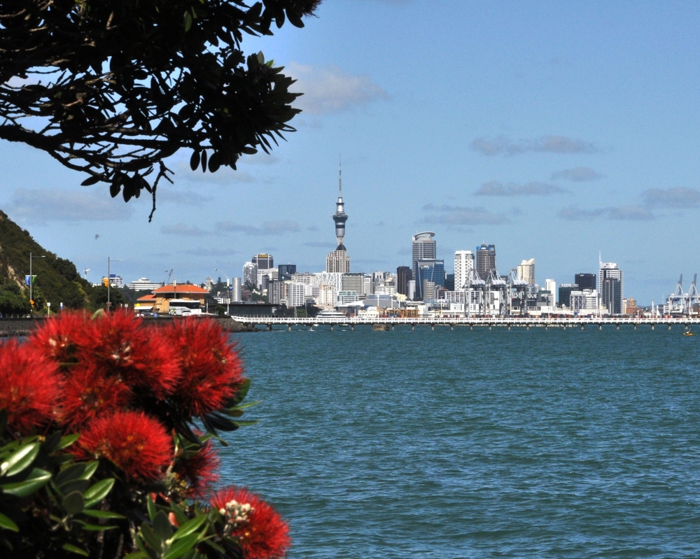 Auckland skyline from Tamaki Yacht Club