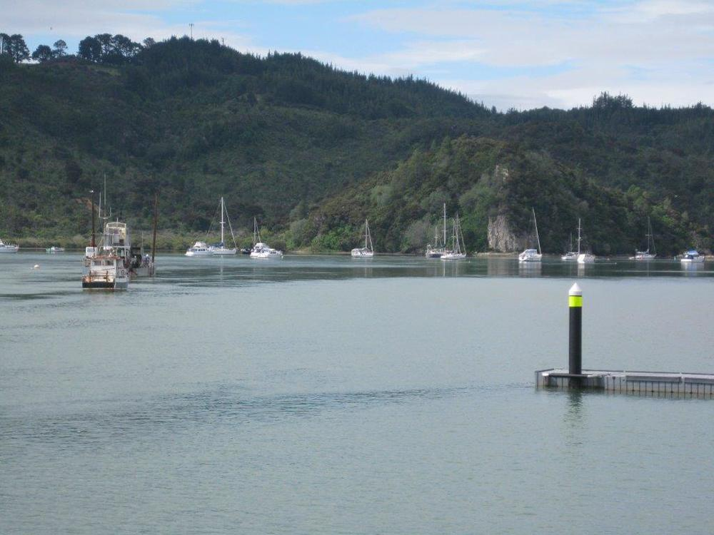 Boats moored in Whitianga Harbour