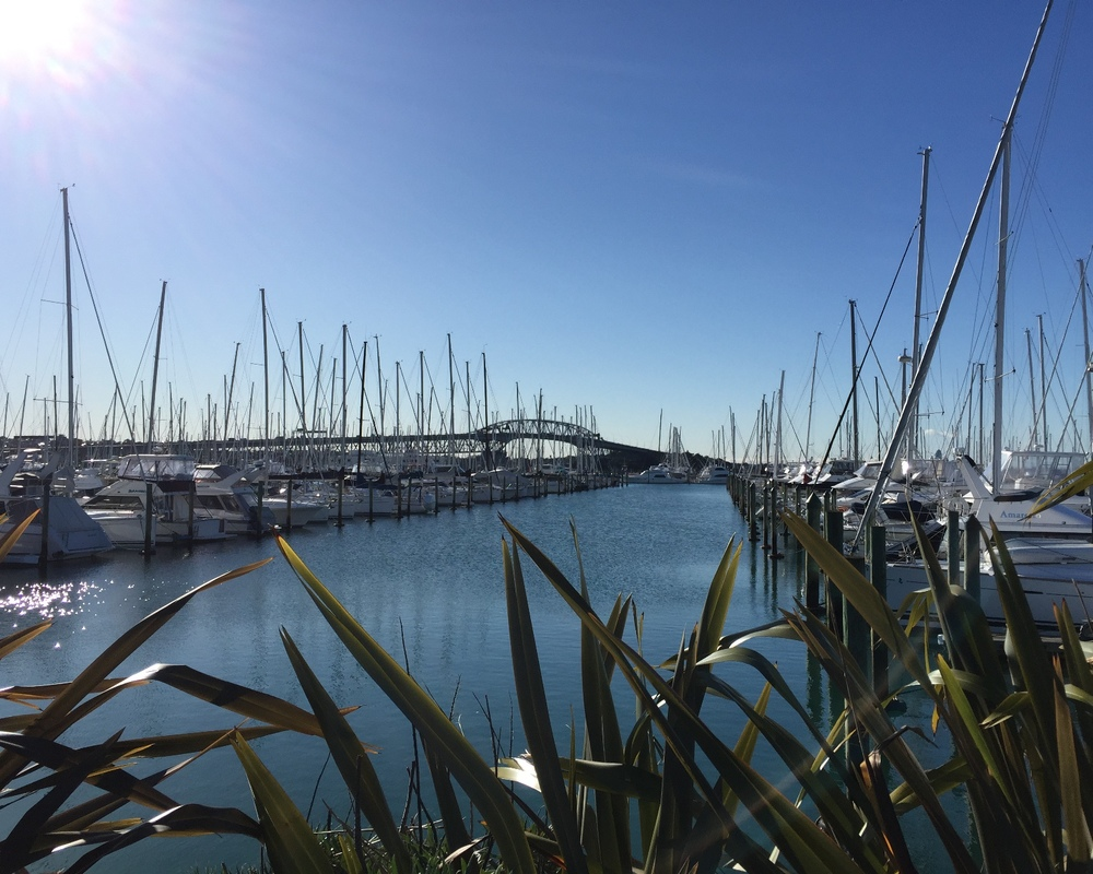 Auckland is definitely theCity of Sails