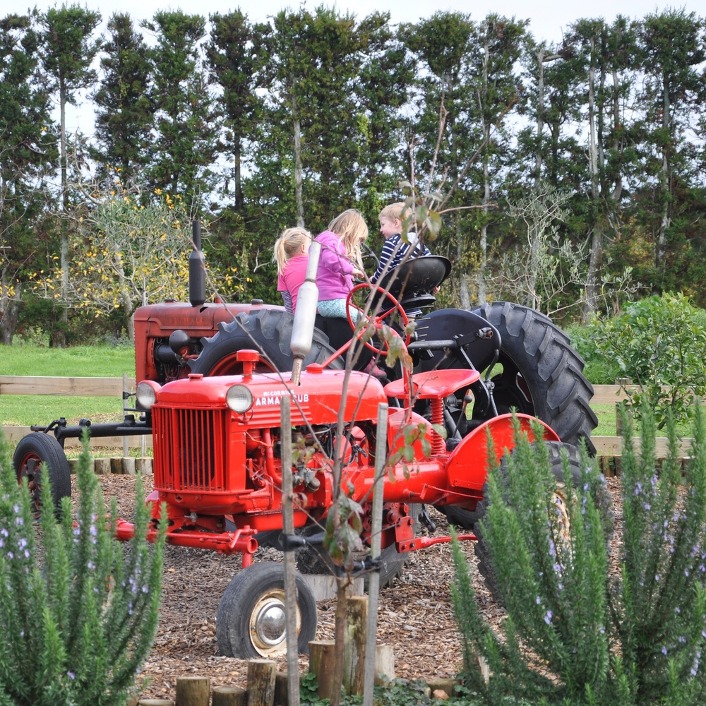 Nothing like a tractor for kids to play on