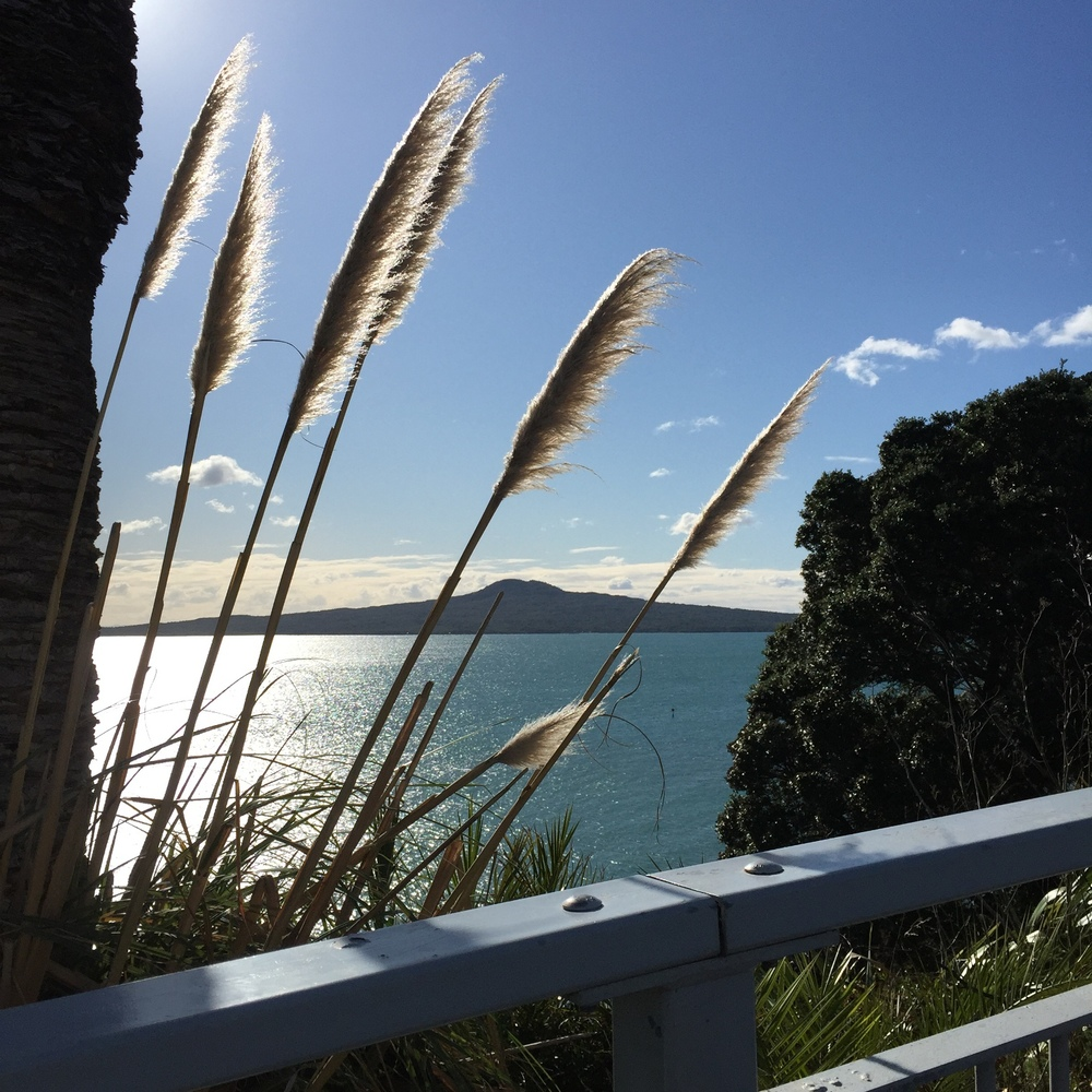 View to Rangitoto Island