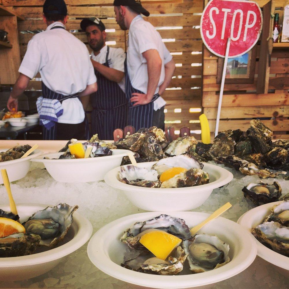 Freshly shucked Mahurangi oysters