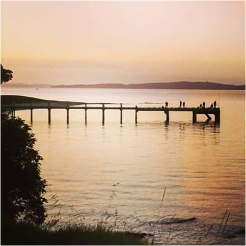 Auckland's Hauraki Gulf at sunset (photo supplied)