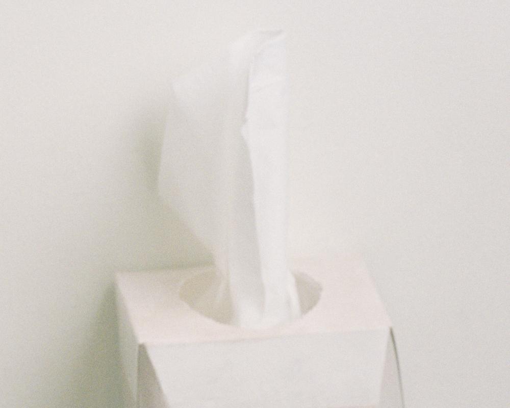 Tissue, 2012