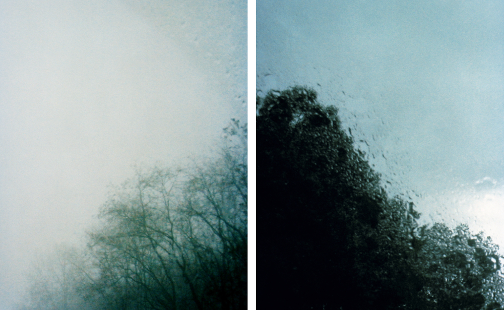 Dyptych, 2012