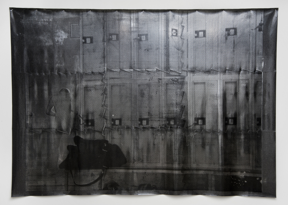 Untitled (Goya's dog head), 2011