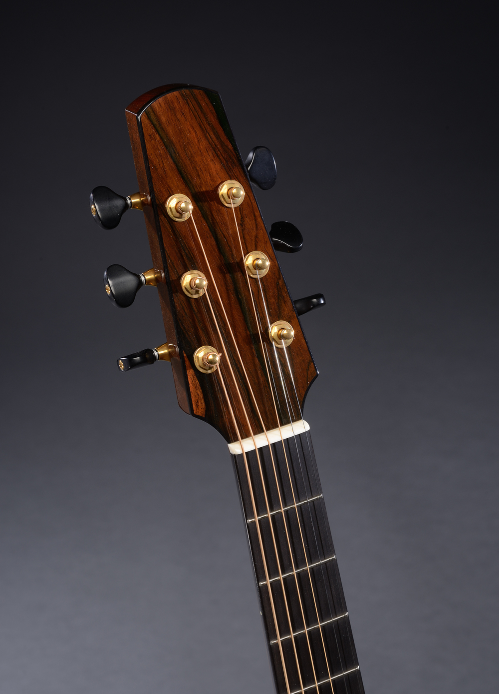 Traugott Model R Brazilian guitar