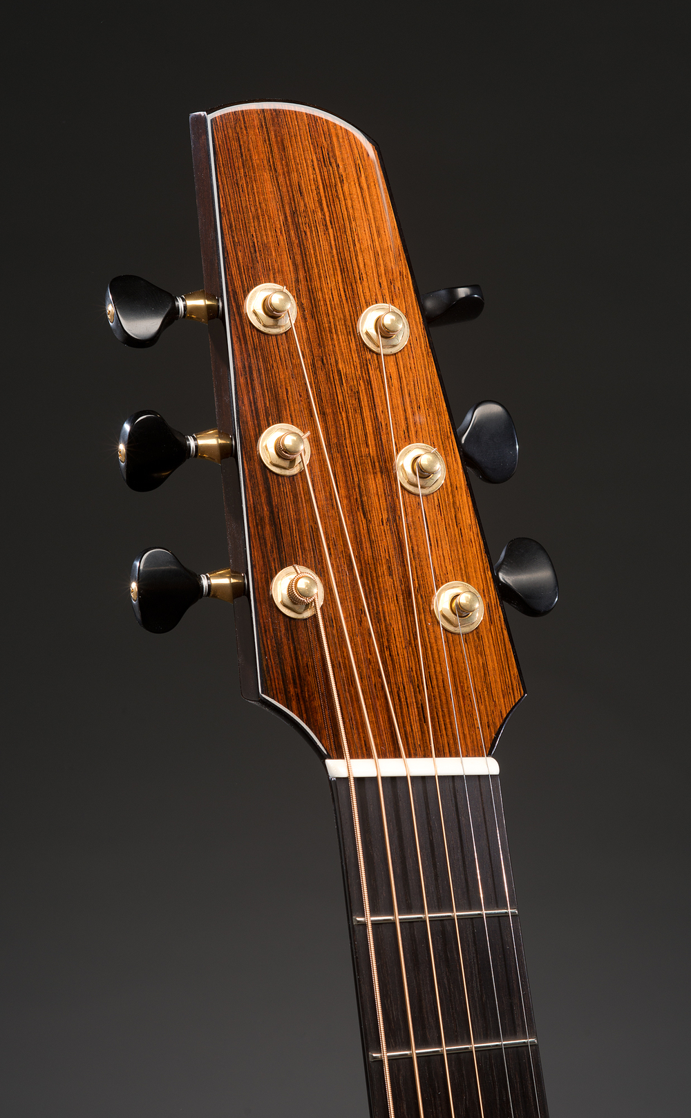 Traugott Model R Cutaway Brazilian Fan Fret