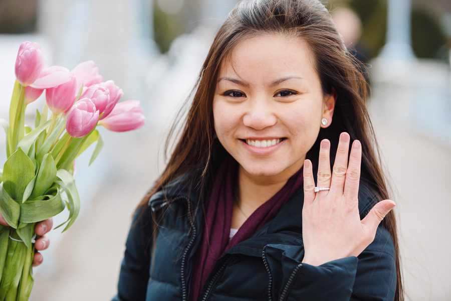 Boston public gardens proposal she said yes (15)