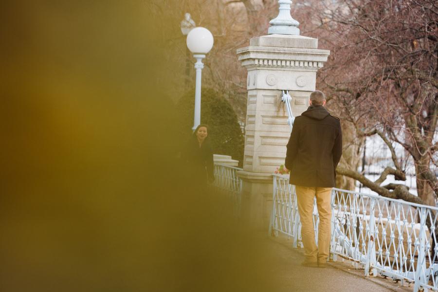 Boston public gardens proposal she said yes (3)