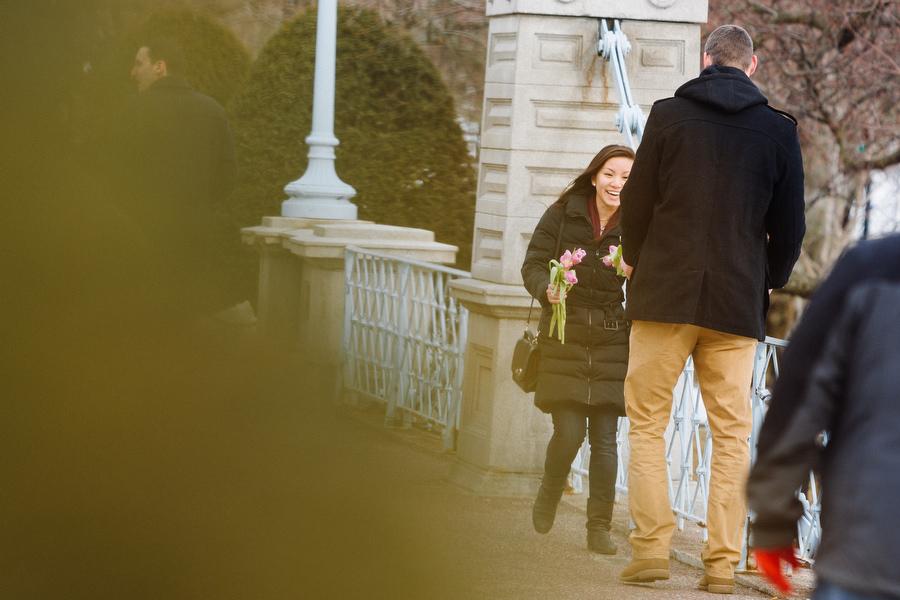 Boston public gardens proposal she said yes (4)