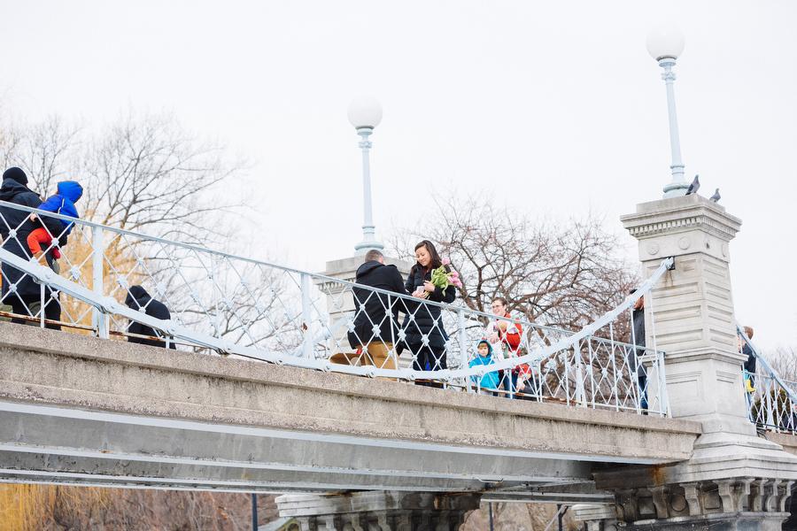 Boston public gardens proposal she said yes (8)