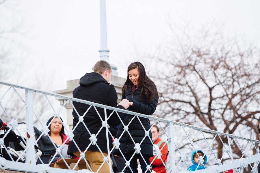 Boston public gardens proposal she said yes (9)