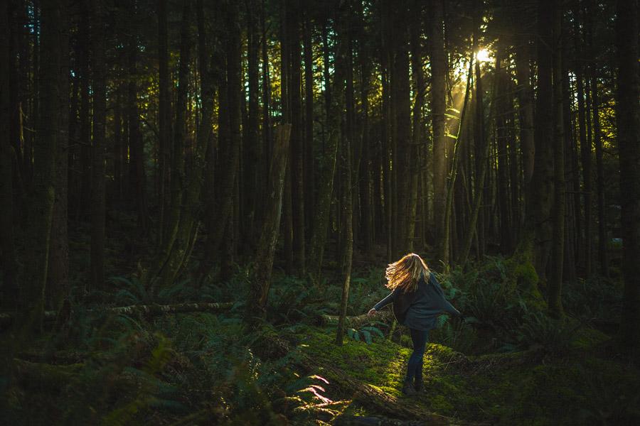 exploring oregon coast woods  never stop exploring pnw light