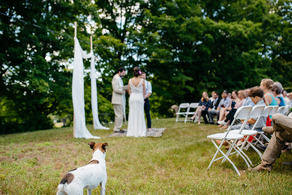 west mountain inn weddings  HABITAT EDUCATION CENTER & WILDLIFE SANCTUARY WEDDING  riverside farm vermont wedding super cute dog at the ceremony