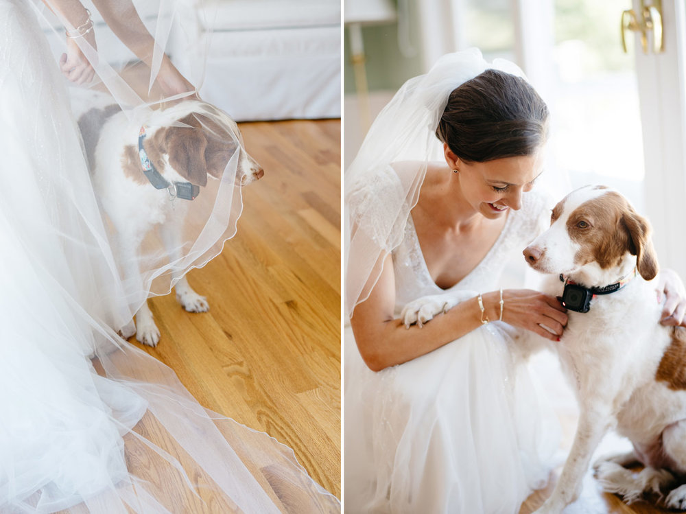 lovely bride and her adorable pup getting ready for the wedding in cape cod, beach weddings