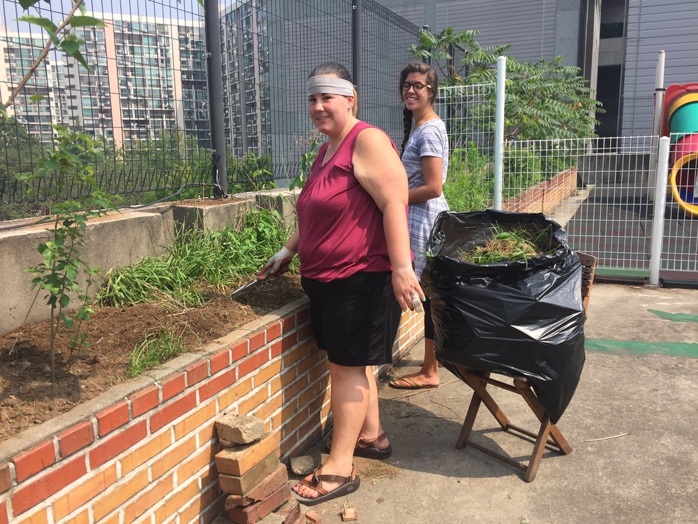 Jubilee Service Project: Weeds
